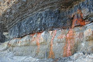 Coal - Coastal exposure of the Point Aconi Seam (Nova Scotia)