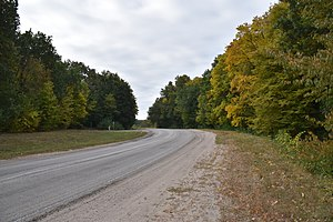 T1022 road in Bohuslav Raion (1).jpg