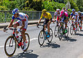 TDF 2015, étape 13, Montgiscard (3051).jpg