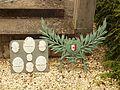 Tagnon-FR-08-monument aux morts-04.jpg
