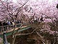Takato Joushi Park2.jpg