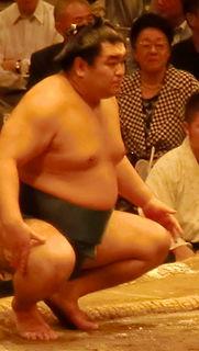 Tamaasuka Daisuke Sumo wrestler