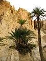 Tamaghza, Tunisia - panoramio.jpg