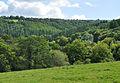 Tamar valley from Luckett.jpg