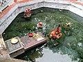 Tapta Pani (Hot Spring), Odisha (1).jpg