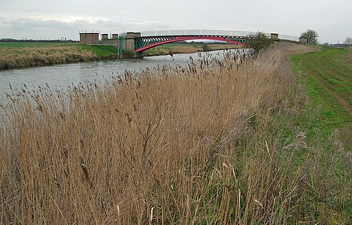 The Ancholme River Bank near Saxby Bridge - geograph.org.uk - 1808653