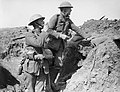 The Battle of the Somme, July-november 1916 Q1299.jpg