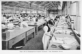 The C.W.S. Desborough Corset Factory, The Finishing Room.png