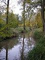 The Long pond - geograph.org.uk - 278705.jpg