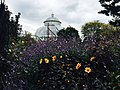 The New York Botanical Garden, the Bronx.jpg