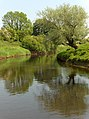 The River Forth - geograph.org.uk - 184265.jpg