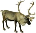 The deer of all lands (1898) Scandinavian reindeer white background.png