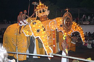 Kandy Esala Perahera - Elephants at the Esala Perahera