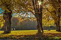 The park at Ulriksdals Slott in fall - panoramio.jpg