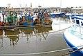 The weekend at Kilkeel harbour (2) - geograph.org.uk - 710277.jpg