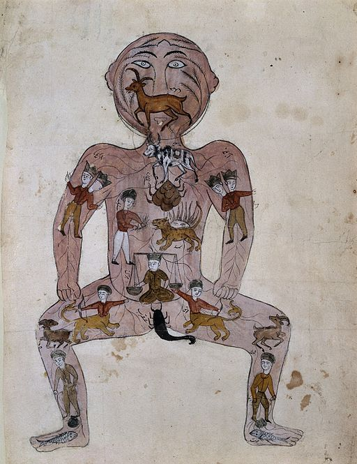The zodiac man. Watercolour painting by a Persian artist Wellcome L0002721