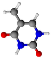 Thymine.png