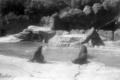 Tierpark Hagenbeck 1956 (1).png