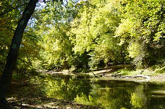 Tiffin River im Goll Woods State Nature Preserve in Ohio