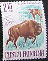 Timbru bizon.jpg