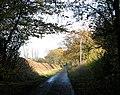 To East Carleton - Mulbarton on Spong Lane - geograph.org.uk - 1585443.jpg