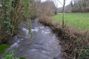 River Tone - The River Tone at Tracebridge