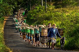 Tradisi Unggahan Bonokeling.jpg