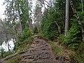 Trail at Silberteich 09.jpg