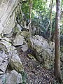 Trail of Mount Furushi 201901 01.jpg