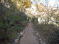 Trail through Bright Angel Campground.JPG