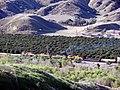 Train in San Timoteo Canyon, Redlands, CA 3-2012 (6982459303).jpg