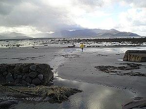 Tralee Bay - Image: Traleebay