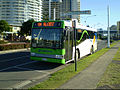 Translink MDi in Tweed Heads.jpg