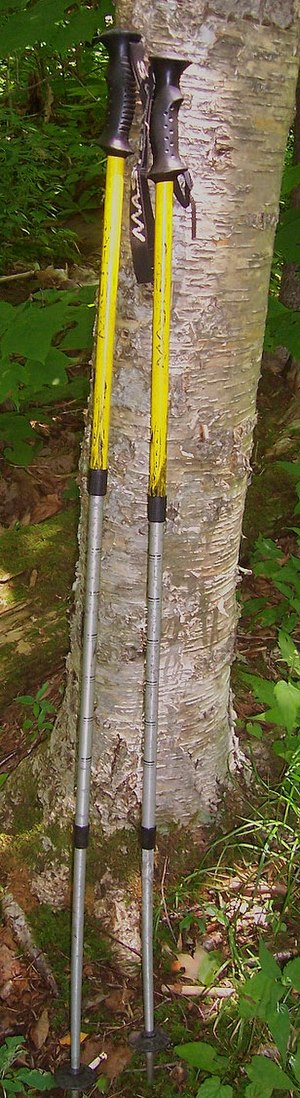 A pair of retractable poles with black handles and three fully extended retractable sections, yellow at the top and metallic silver at the bottom, resting against a birch tree