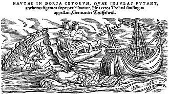Toothed whale - A whale as depicted by Conrad Gesner, 1587, in Historiae animalium