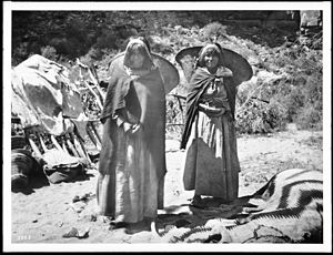"Havasupai - Two Havasupai Indian women with ""Kathaks"" on their backs, ca.1900"