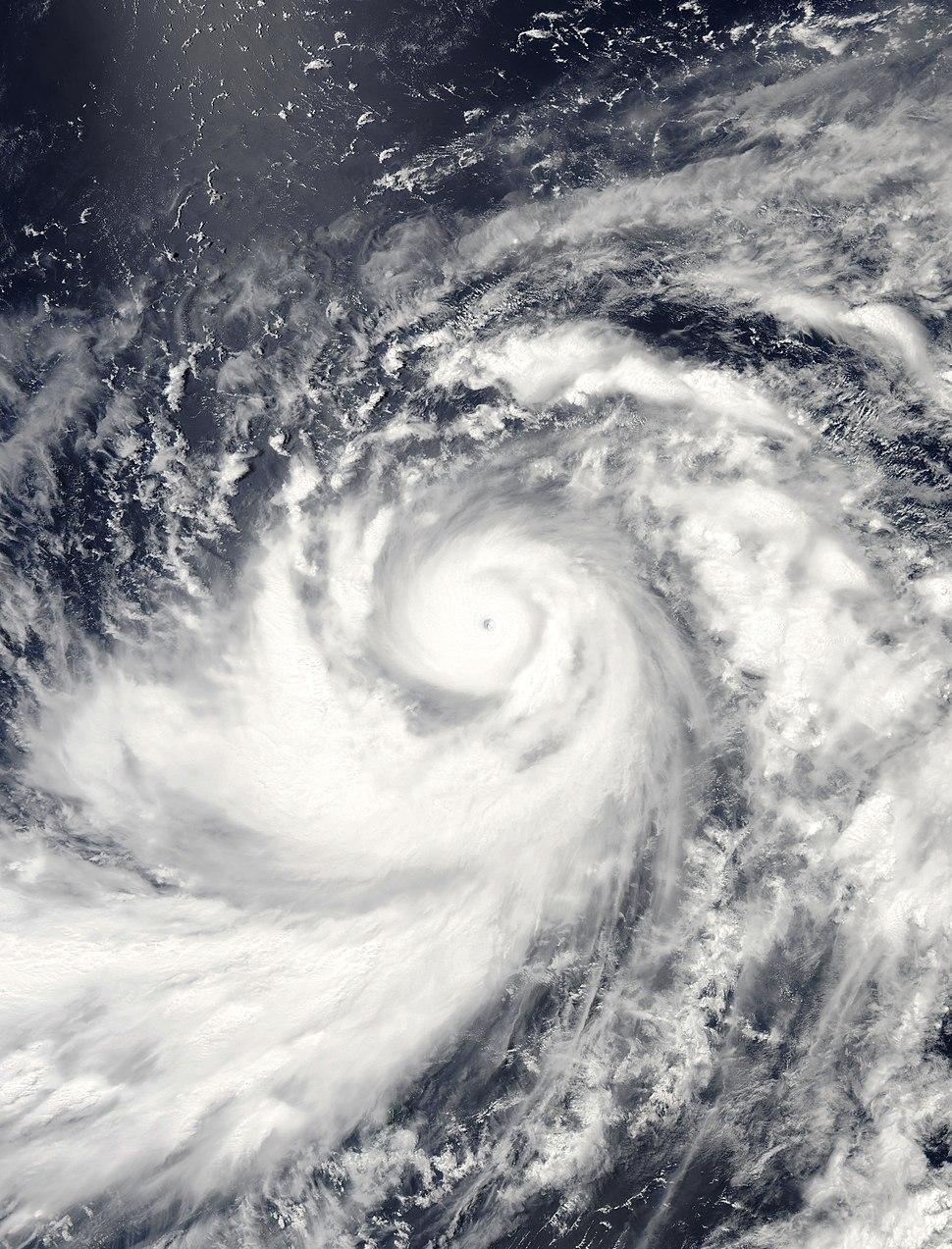 Typhoon dianmu 2004