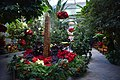 U.S. Botanic Garden at the Holidays (23695235061).jpg