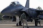 USAF jets depart TLP 2015-1 150129-F-QS677-275.jpg