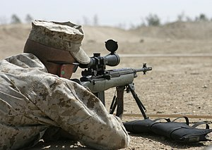 300px-USMC_M14_DMR.JPG