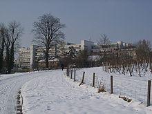 Universität Hohenheim Wikipedia