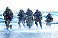 United States Navy SEALs 555.jpg