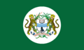 University of Guyana Flag.png