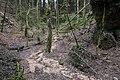 Unterwald-Ponor 05.jpg