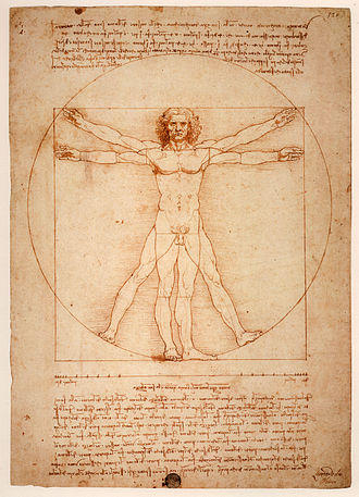 Human - Vitruvian Man, Leonardo da Vinci's image is often used as an implied symbol of the essential symmetry of the human body, and by extension, of the universe as a whole.