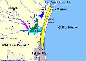 Laguna Madre (United States) - Alazan Bay (dark green), Baffin Bay (light blue), Cayo del Grullo (pink), Upper Laguna Madre (yellow), Laguna Salada (dark brown, directly to the left of Baffin Bay)