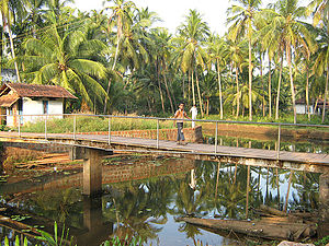 Timber bridge - Wooden bridge at Kannur, India.