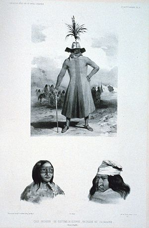 Scientific racism - Homo monstrosus, or Patagonian giants, from Voyage au pole sud et dans l'Océanie (Voyage to the South Pole, and in Oceania), by Jules Dumont d'Urville