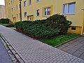 Varkausring Pirna (42731210520).jpg