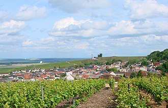 Montagne de Reims Regional Natural Park - The village of Verzenay with grape vineyards in the foreground